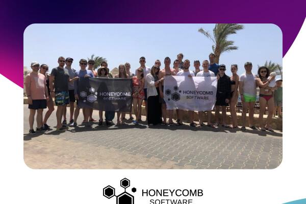 Open IT: компанія Honeycomb Software